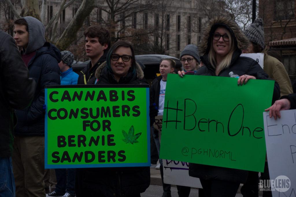 Los consumidores de cannabis estadounidenses apoyan a Sanders (CC. Mark Dixon) - Sensi Seeds