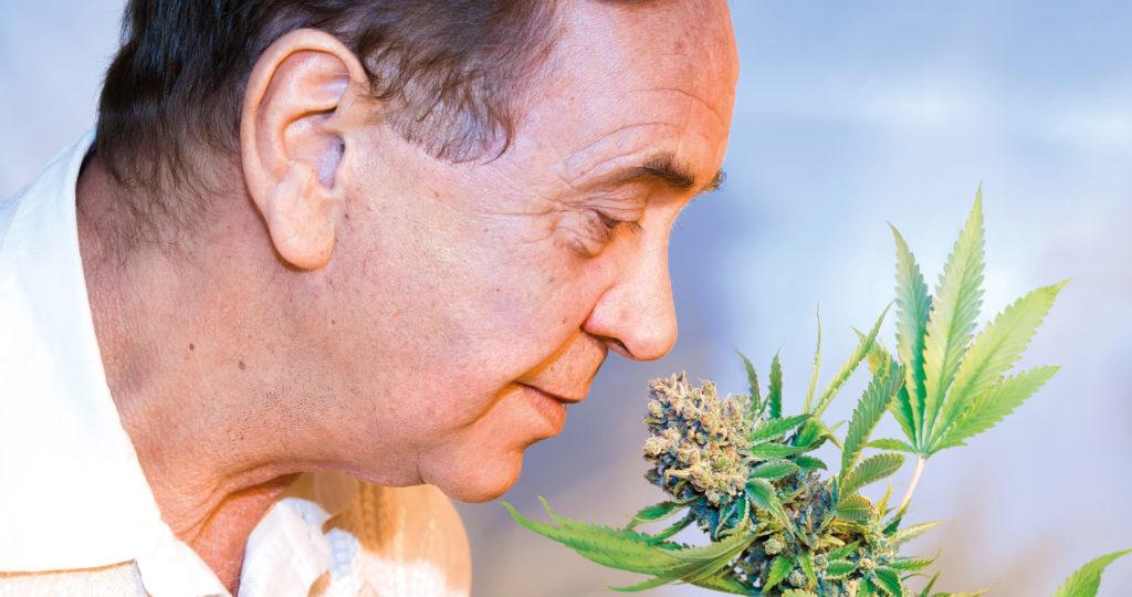 Un hombre en una camisa blanca que huele una planta de cannabis verde.