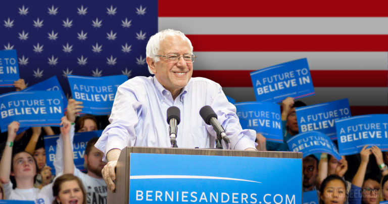 Bernie Sanders and the end of cannabis prohibition