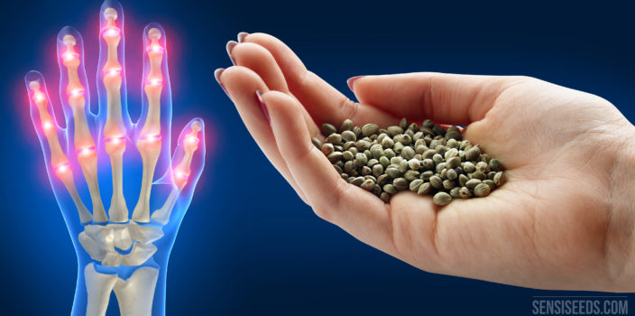 Hempseed can alleviate arthritis in the hands