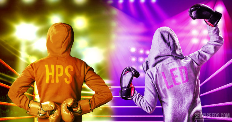 Votre opinion : système d'éclairage HPS ou LED ?