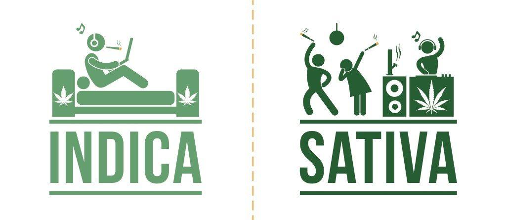 Indica en sativa hebben verschillende effecten