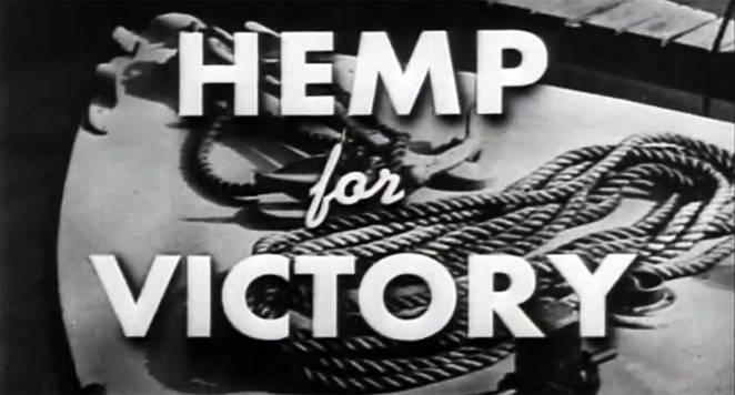 hemp-for-victory5