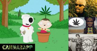 CannaZapp #11: Le cannabis et les paroles de chansons