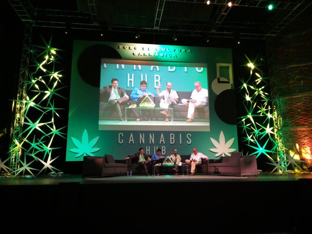 Zur Situation von Cannabis in Mexiko