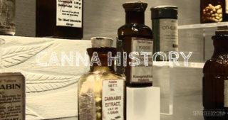 Histoire du Cannabis: le saviez-vous?