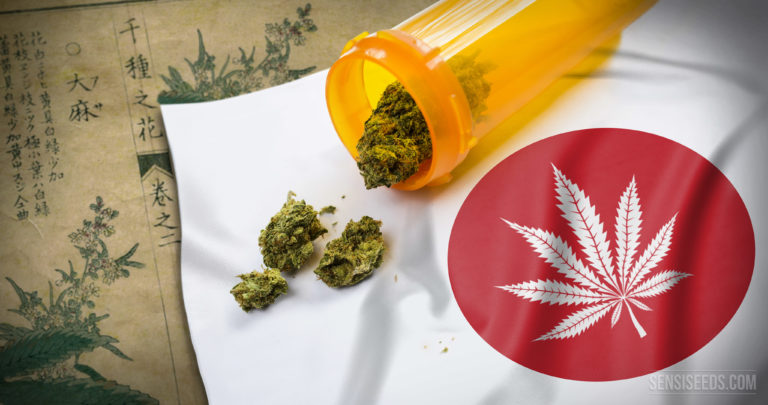 Growing interest in hemp and medical cannabis in Japan