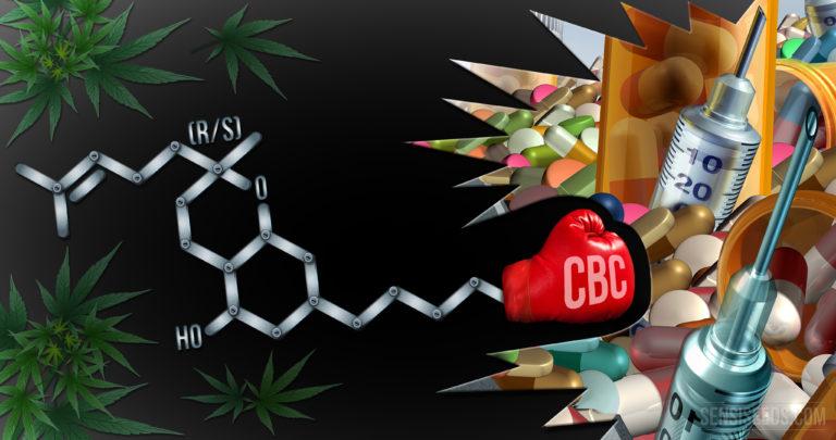 Science des cannabinoïdes 101 : qu'est-ce que le cannabichromène ?