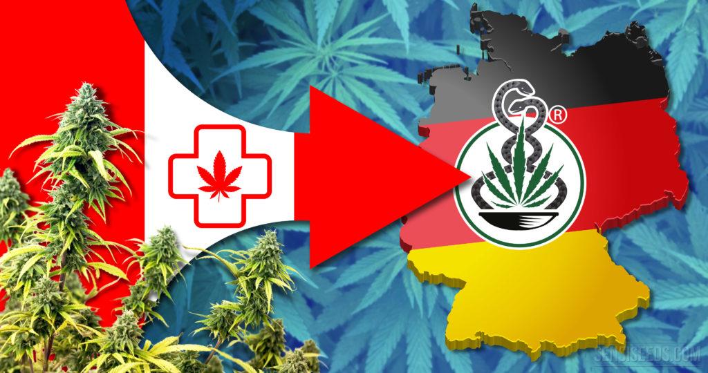 Deutschland importiert vier Sorten medizinisches Cannabis aus Kanada