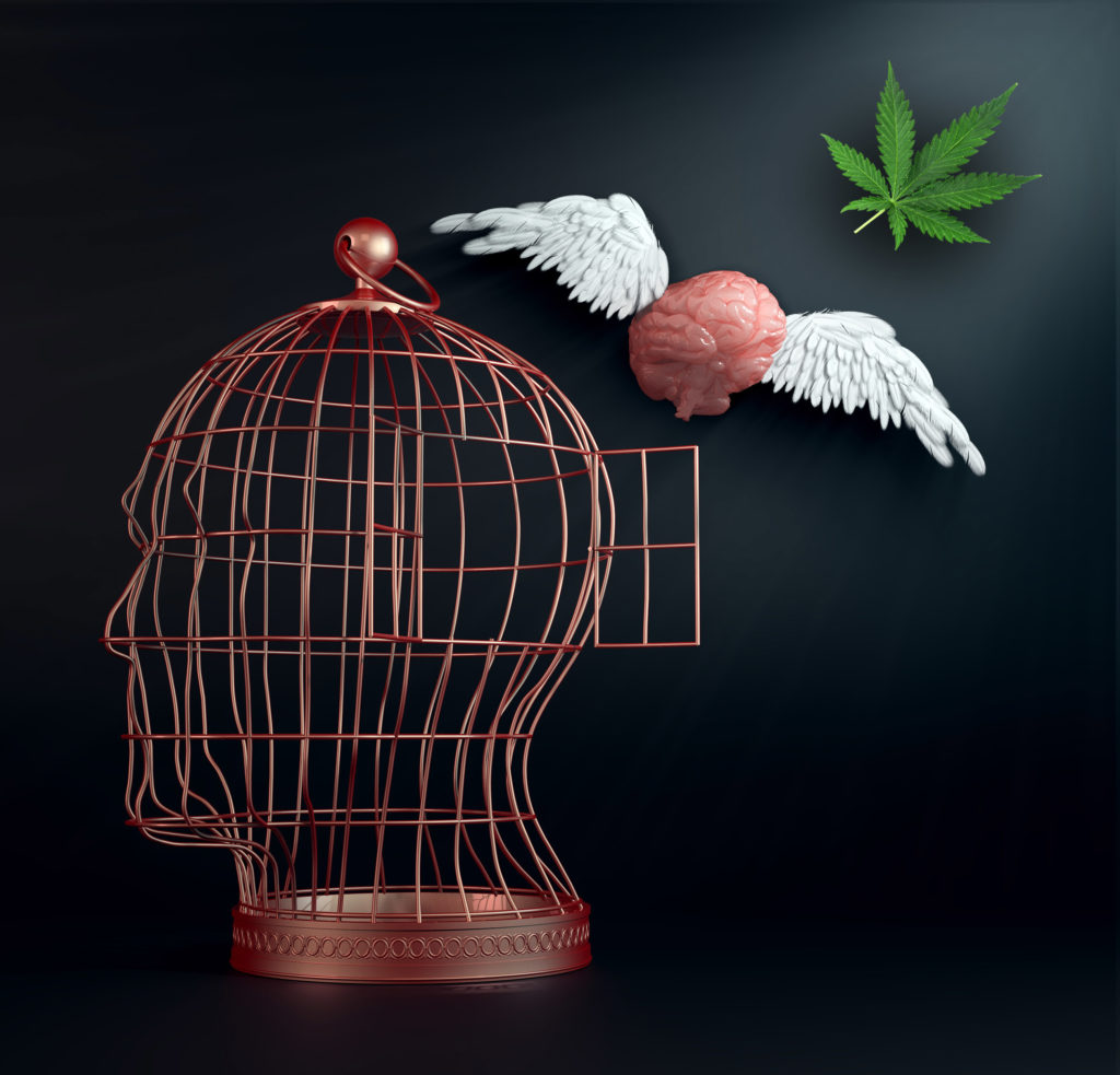 A metal cage in the shape of a head with a brain flying out of it