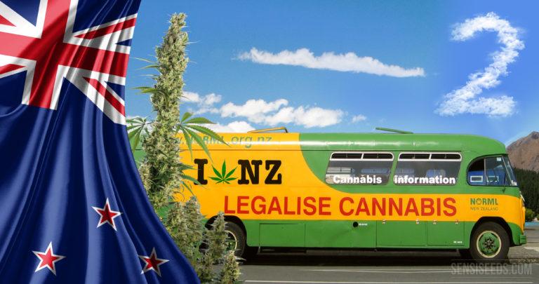 L'Océanie progresse aussi : cannabis en Nouvelle-Zélande, deuxième partie