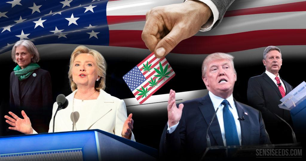 Quatre candidats à la présidence et une plante : le cannabis - Sensi Seeds Blog