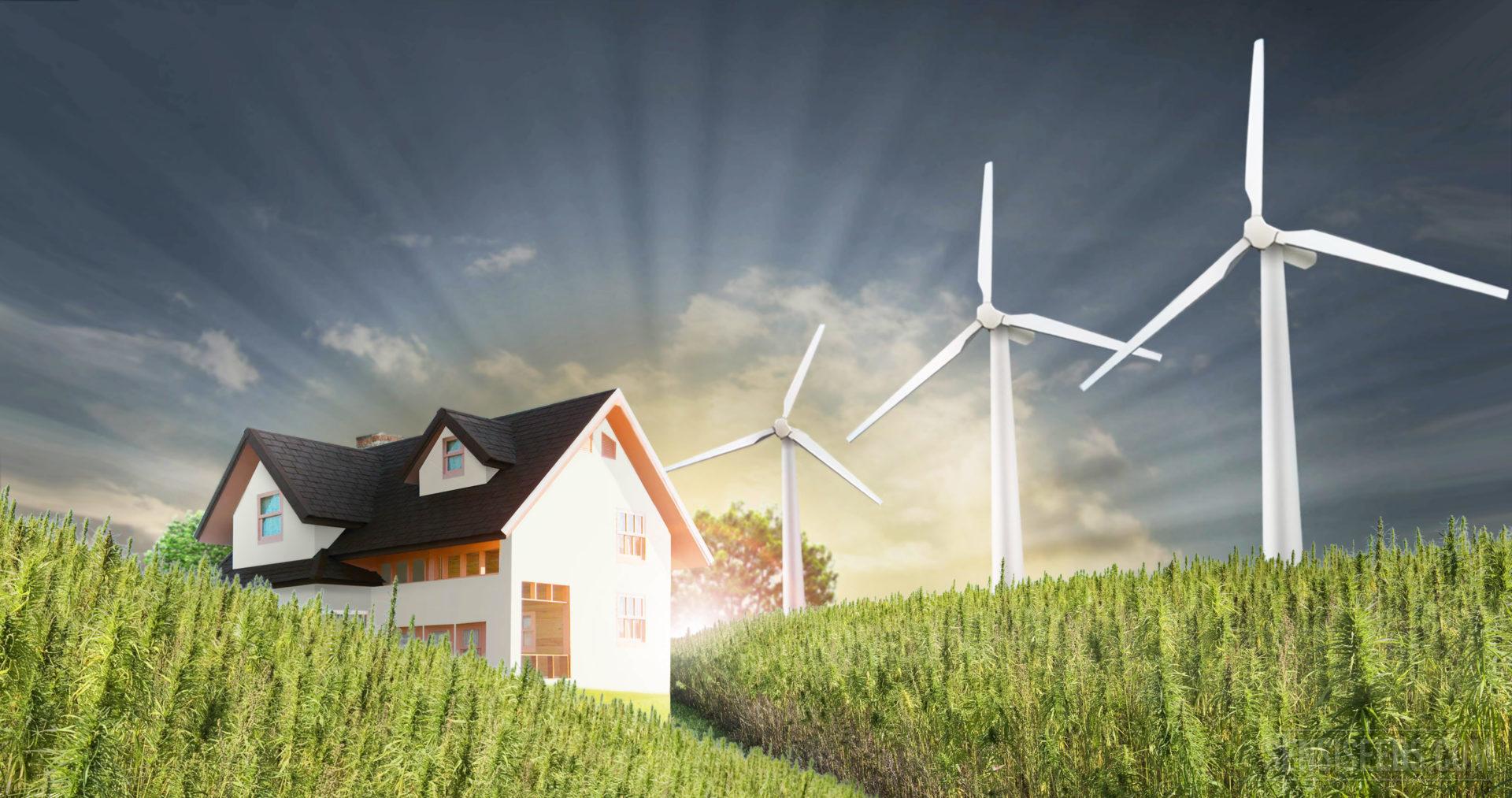 Comment construire une maison de chanvre sensi seeds blog for Batire une maison