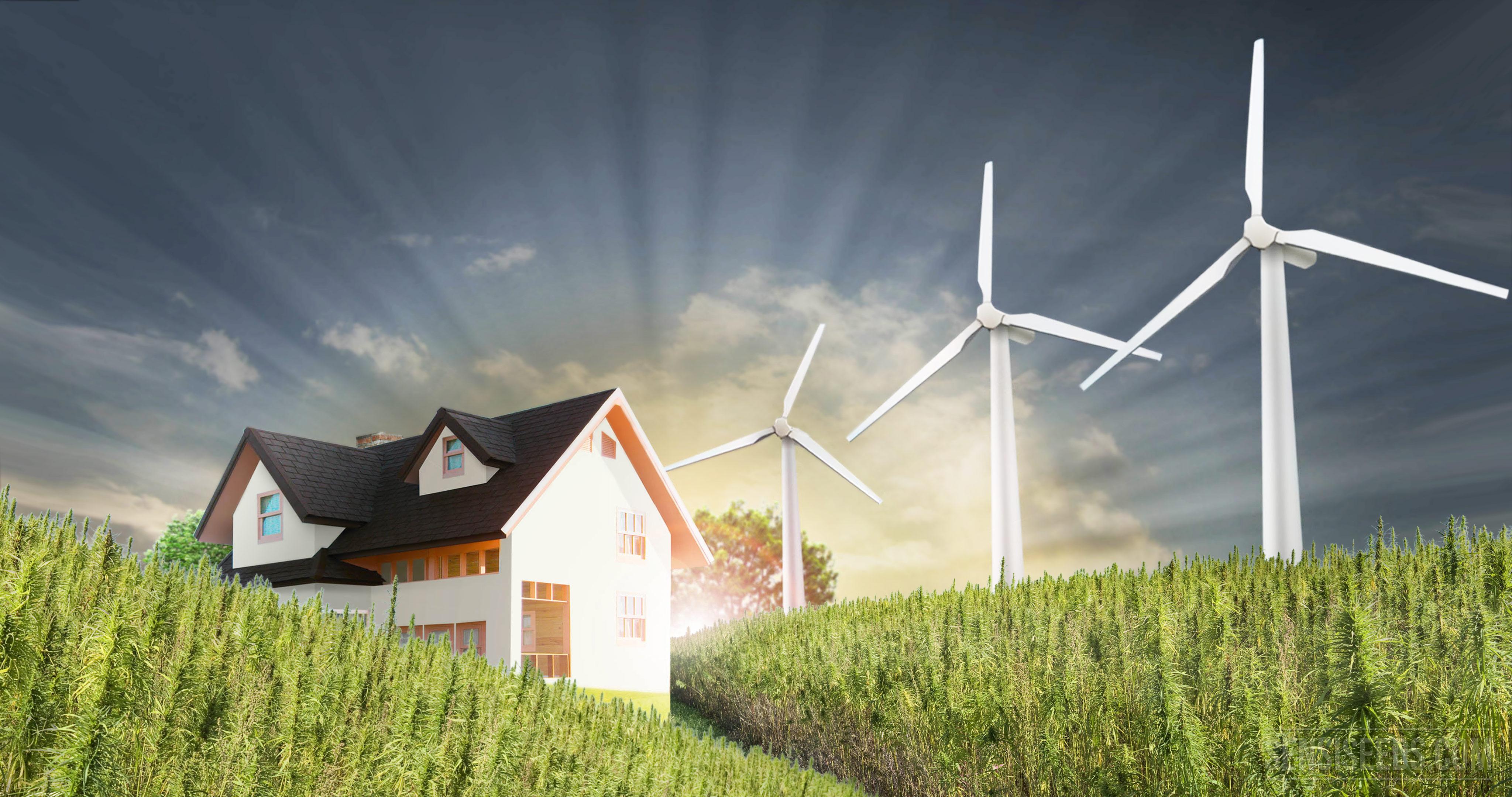 Comment construire une maison de chanvre les rudiments for Batir une maison prix