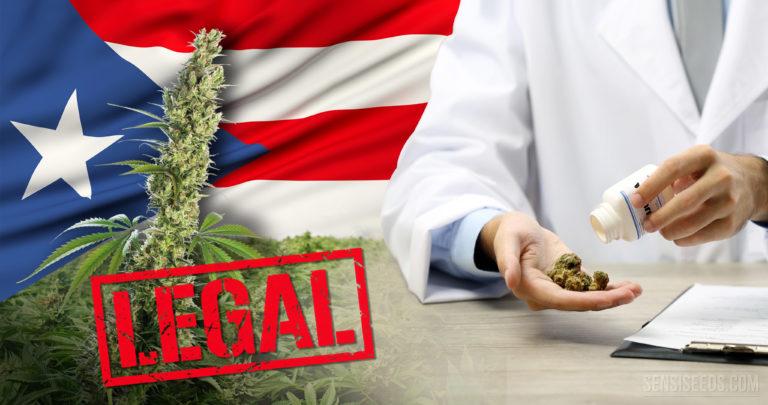 Porto Rico: pas de géant vers la légalisation