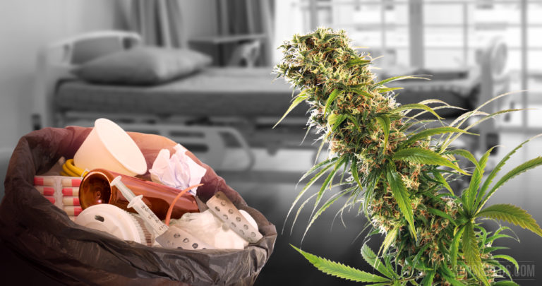 10 Rare Diseases That Cannabis May Treat