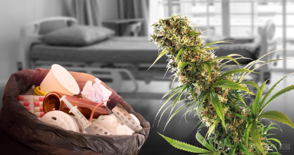 10 seltene Krankheiten, gegen die Cannabis eventuell helfen kann