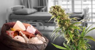 10 maladies rares que le cannabis peut traiter
