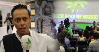 Le Mexique est-il sur le point de mettre fin à la guerre contre le cannabis ?