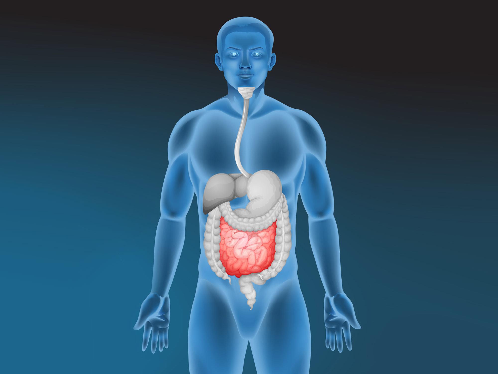 How do edibles affect you? - Sensi Seeds blog