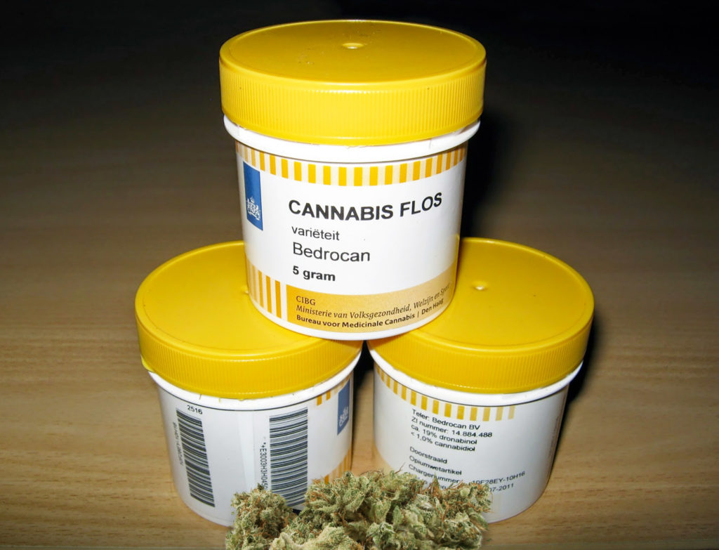 Bedrocan, medicinal cannabis available in Dutch pharmacies