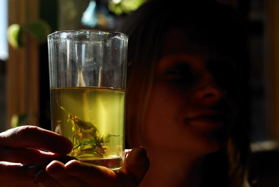 Cannabis para la Tos y los Resfriados - Sensi Seeds Blog