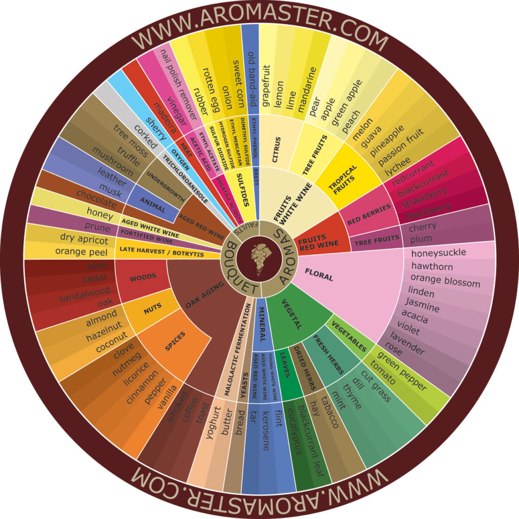 A wine aroma wheel to guide you in wine and cannabis pairings (© Aromaster)