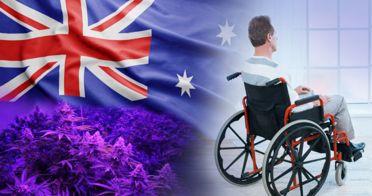 Cultivating medicinal cannabis legal in Australia