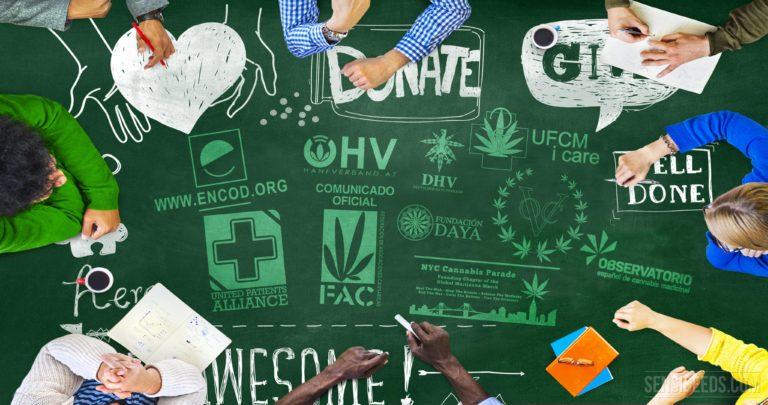¿A Quién Puedes Ayudar En El Cannabis Estas Fiestas Navideñas?