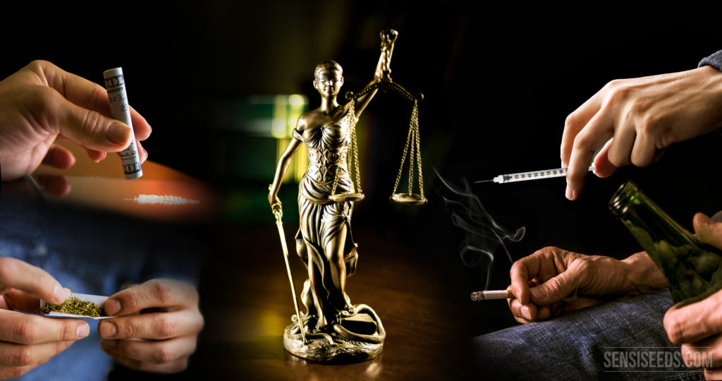 Your opinion: should all drugs be legal? - Sensi Seeds Blog