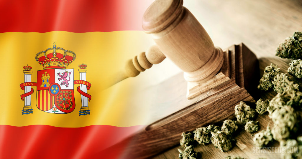 Une ère nouvelle pour les Cannabis Clubs d'Espagne - Sensi Seeds Blog