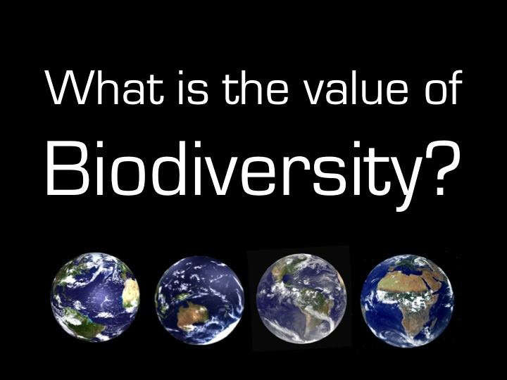 Verlies van biodiversiteit kan al het leven op aarde bedreigen (© planeta)