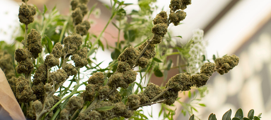 Bouquet de buds de Lowell Farms