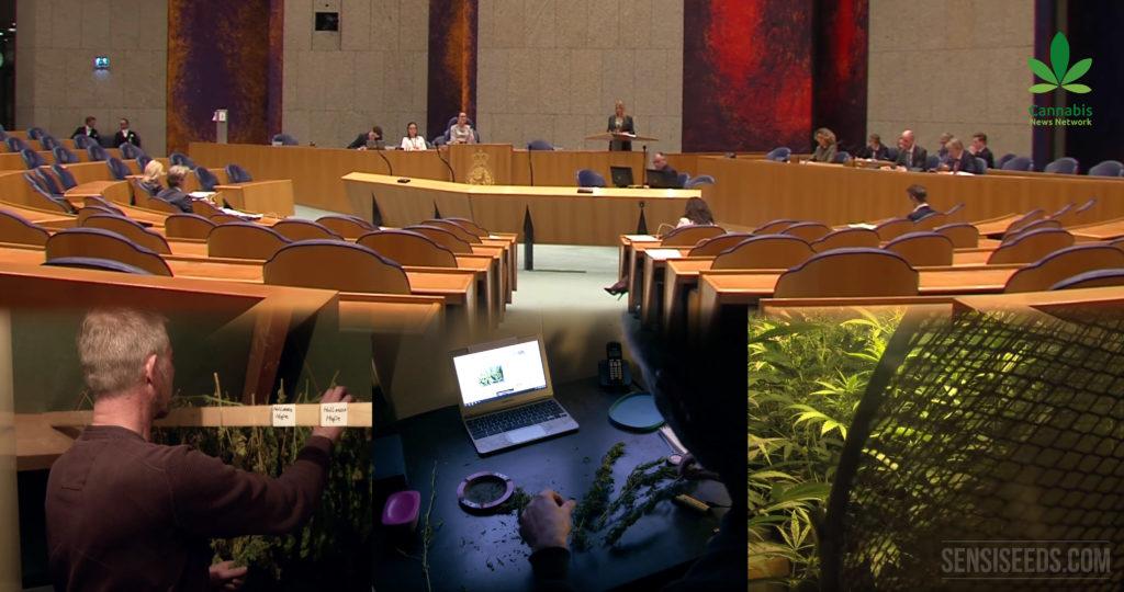 Reefer Madness en el Parlamento Holandés