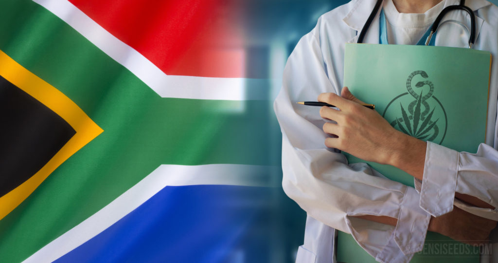 South Africa legalises medicinal cannabis