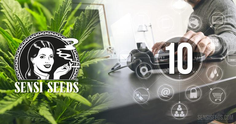 Die 10 häufigsten Fragen an den Sensi Seeds Kundendienst