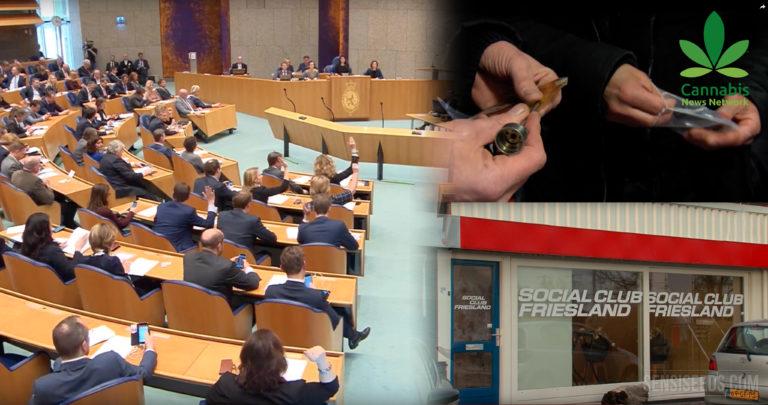 Culture de cannabis personnelle adoptée aux Pays-Bas
