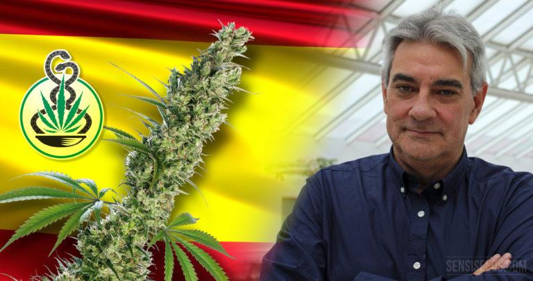 Le député du PP demande la légalisation immédiate du cannabis médicinal