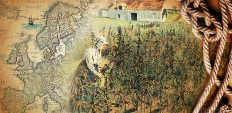The Historic Hemp Towns of Europe - Sensi Seeds Blog
