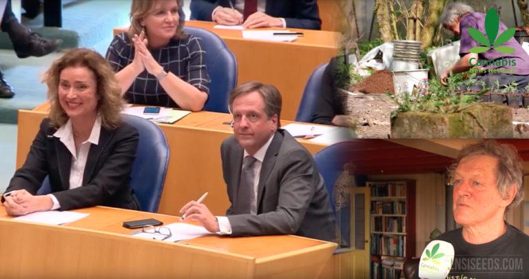 Nouvelle loi sur la culture de cannabis aux Pays-Bas : La suite ?