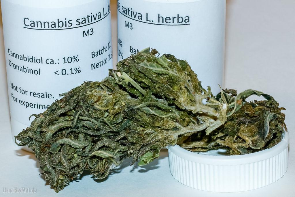 """Foto von getrockneten Cannabisblüten. Im Hintergrund stehen zwei weiße Dosen mit der Aufschrift """"Cannabis sativa L. herba"""". Der Cannabidiol-Gehalt beträgt 10%, während Dronabinol mit weniger als 0.1 % angegeben wird."""