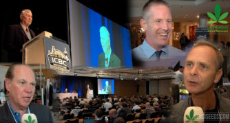 Cannabis News Network: ICBC Berlin with Alan Dronkers - Sensi Seeds Blog