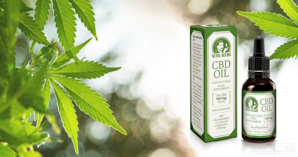 is CBD oil helpful for pain