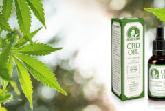 Photo montage on which, on the right, the packaging and bottle of CBD oil from Sensi Seeds and, on the left, several leaves of a cannabis plant can be seen. The background has been made blurred thanks to a bokeh effect.