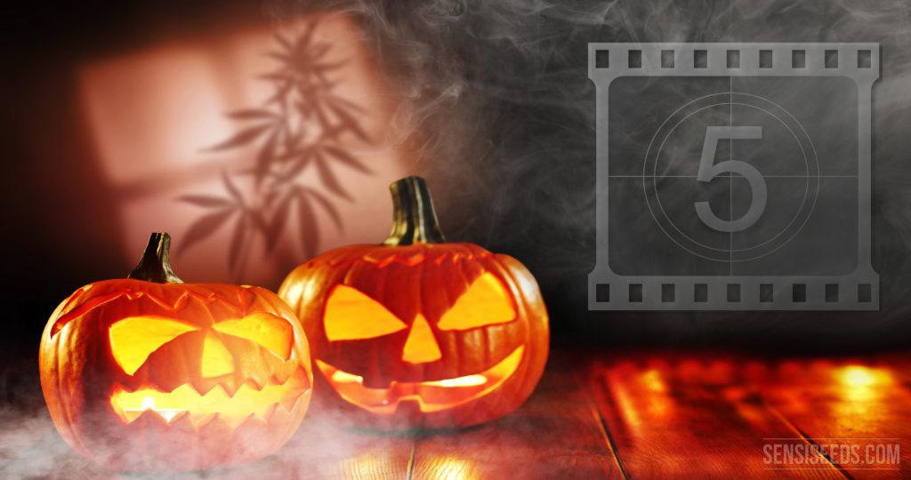 Top 5 Halloween movies to watch while smoking cannabis