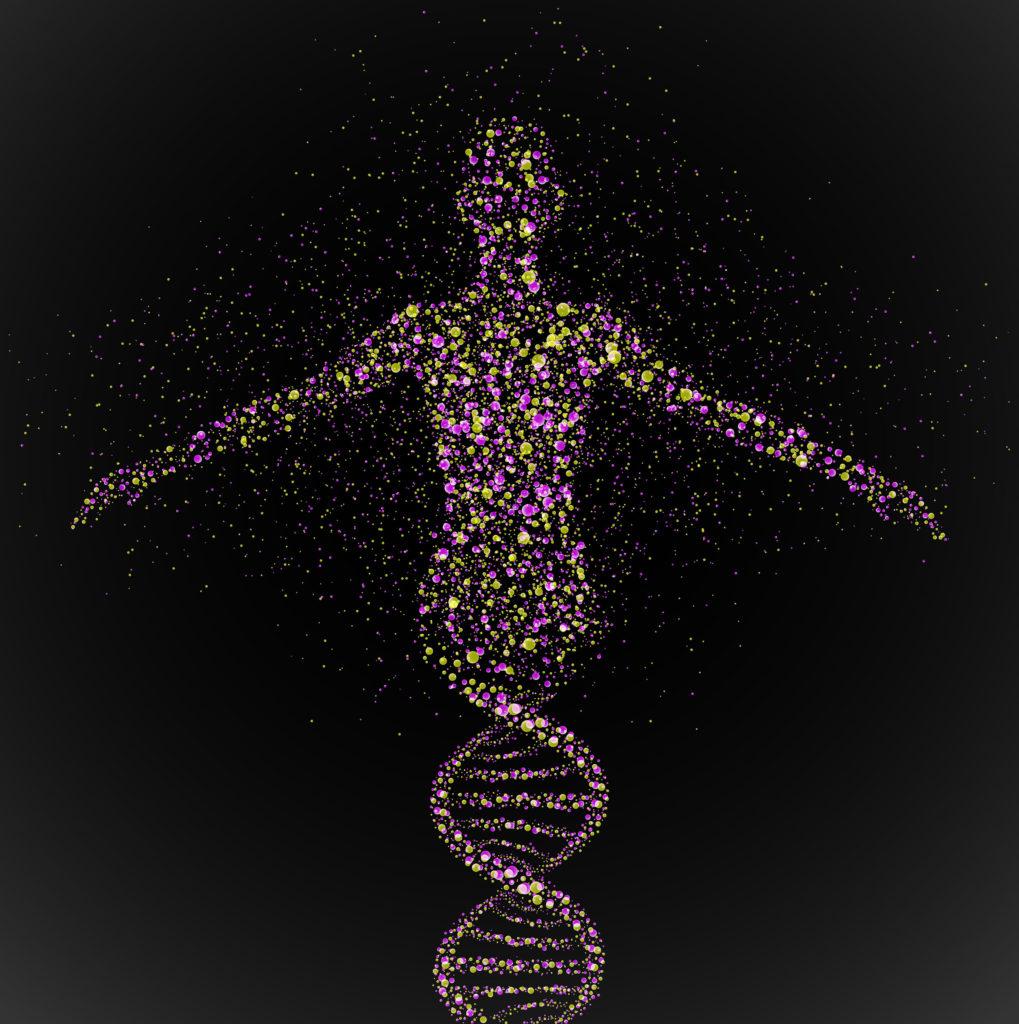 Primer Test Genético del Mundo Que Determina Tu Reacción Al Cannabis