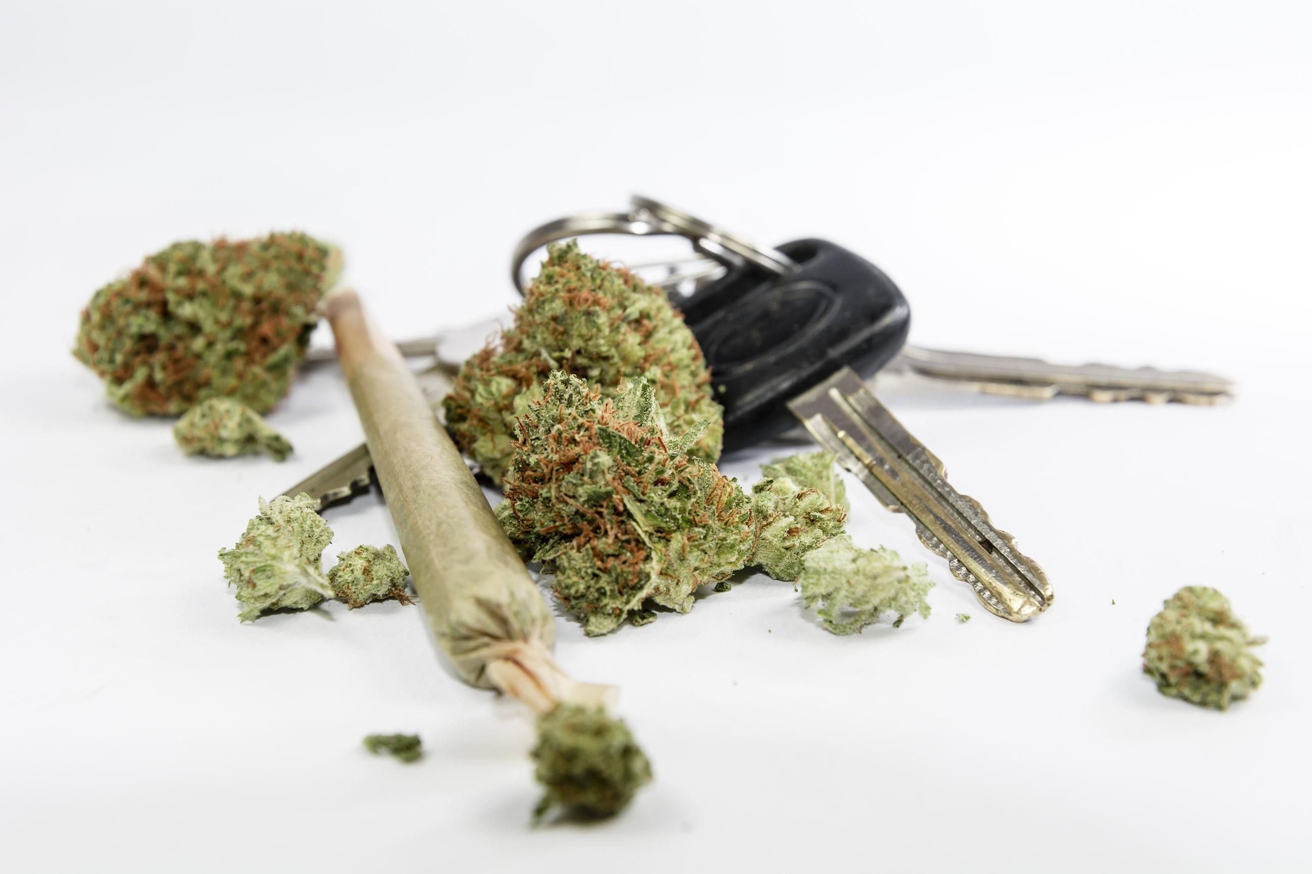 autofahren und cannabis in spanien die kriminalisierungsstrategie 2 2. Black Bedroom Furniture Sets. Home Design Ideas