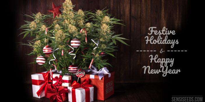"""Un fotomontaje a la izquierda, un arbolito cannábico de navidad con regalos y bastones de caramelo al lado, con un fondo de madera. A la derecha un texto escrito con un tipo de letra estrambótica que dice """"Festive Holidays & Happy New Year""""."""
