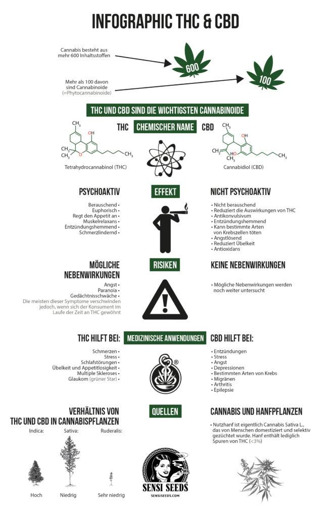 Infografik über die Unterschiede zwischen Tetrahydrocannabinol (THC) und Cannabidiol (CBD). Verglichen werden (von oben nach unten) die chemischen Strukturformeln, die Effekte, die Risiken, die medizinischen Anwendungen und die Quellen.