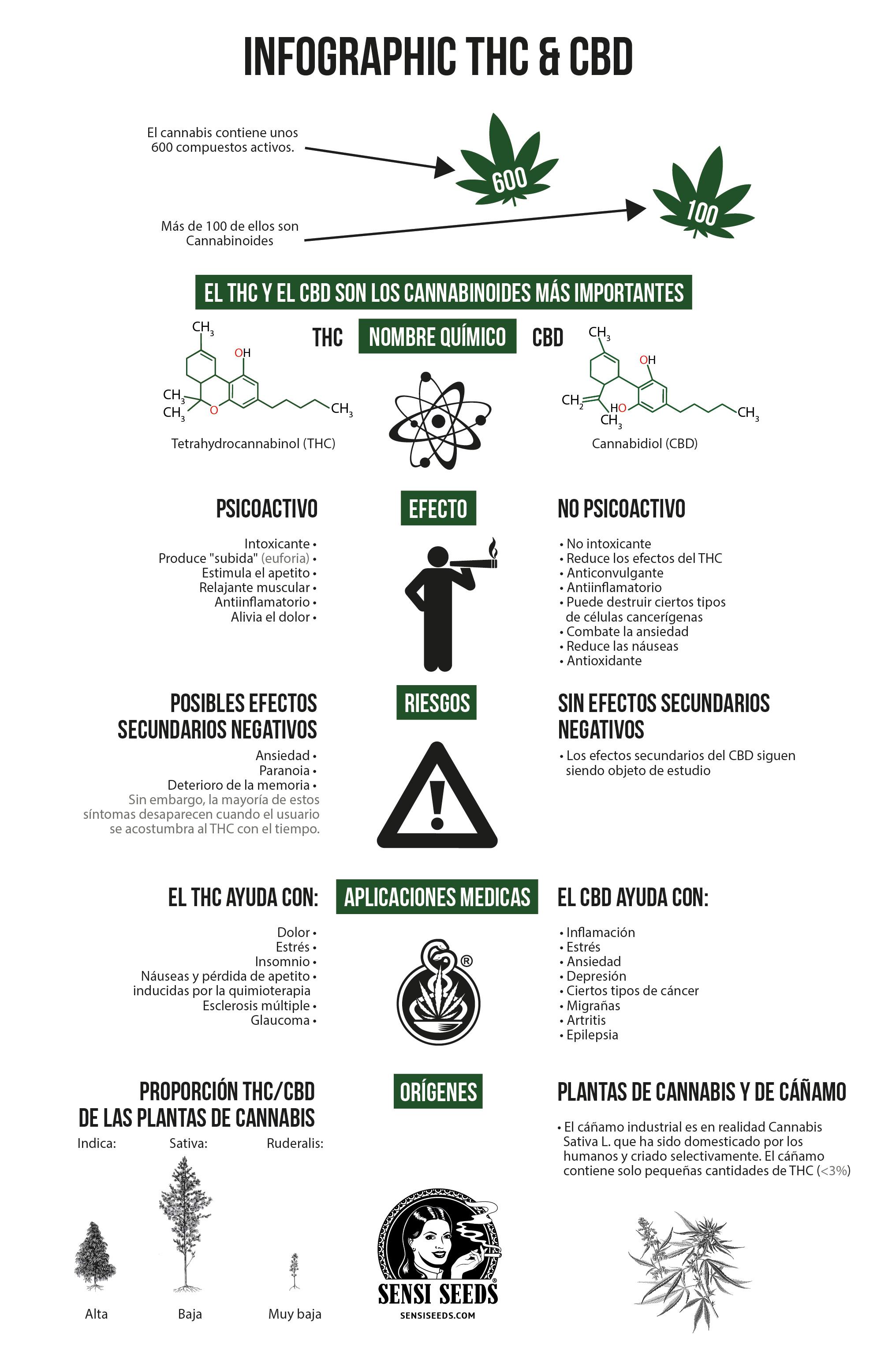 Infografía sobre las diferencias entre el tetrahidrocannabinol (THC) y el cannabidiol (CBD). Se realizan comparaciones (de arriba a abajo) entre las fórmulas estructurales de los compuestos químicos, los efectos, los riesgos, los usos medicinales y el origen.